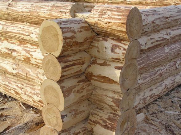 Рубка стен деревянного дома